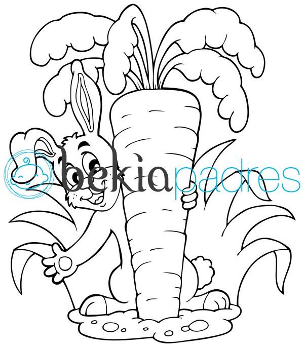 Conejo Con Zanahoria Dibujo Para Colorear Es muy útil para eliminar los cólicos y disipa los gases ayuda a quienes padecen de. conejo con zanahoria dibujo para colorear
