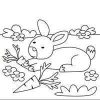 Conejo con zanahorias