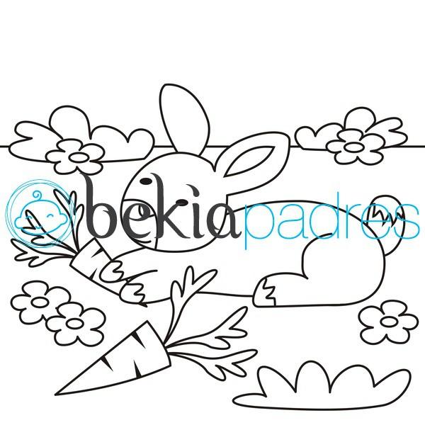 Conejo Con Zanahorias Dibujo Para Colorear