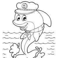 Delfín marinero