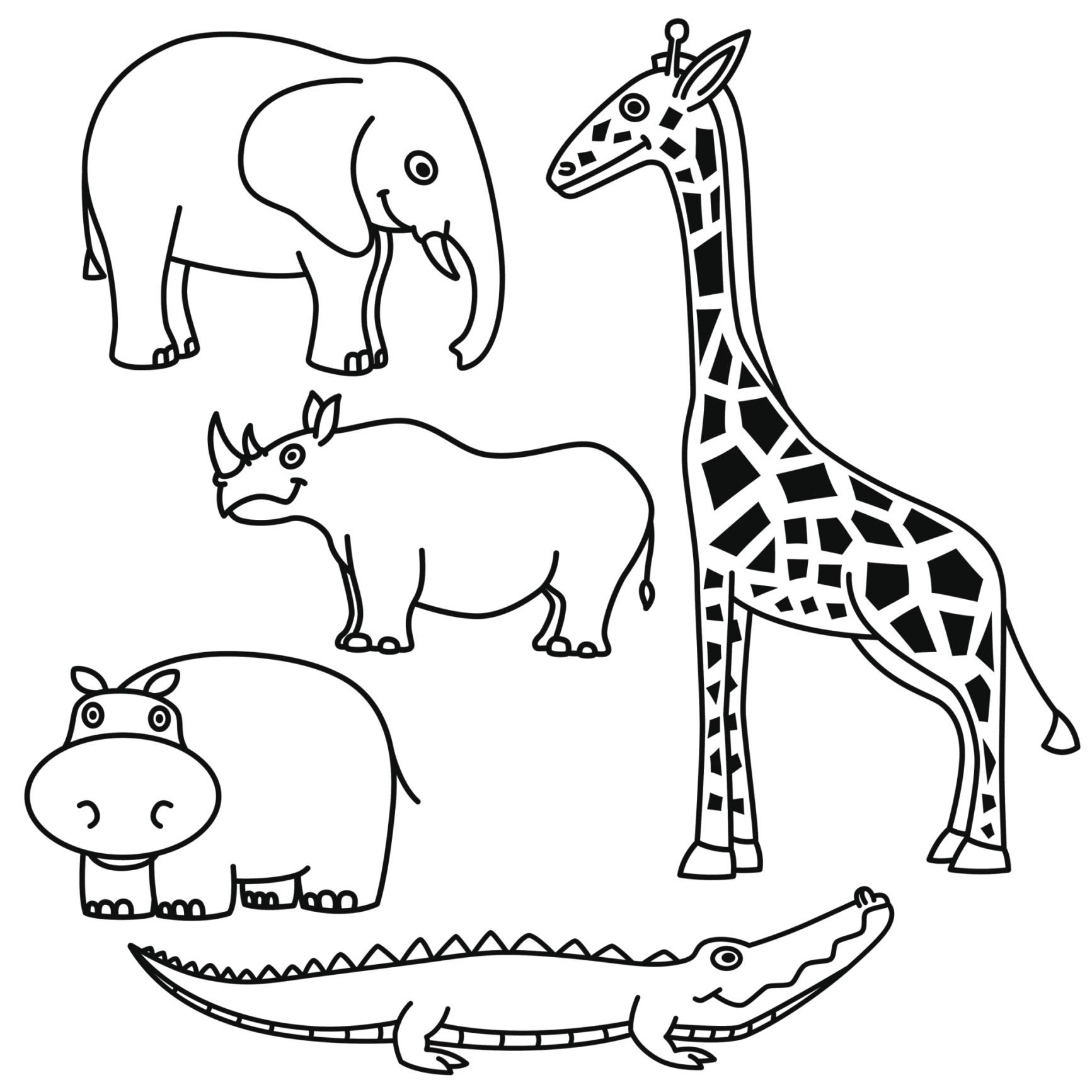 Animales de Sabana