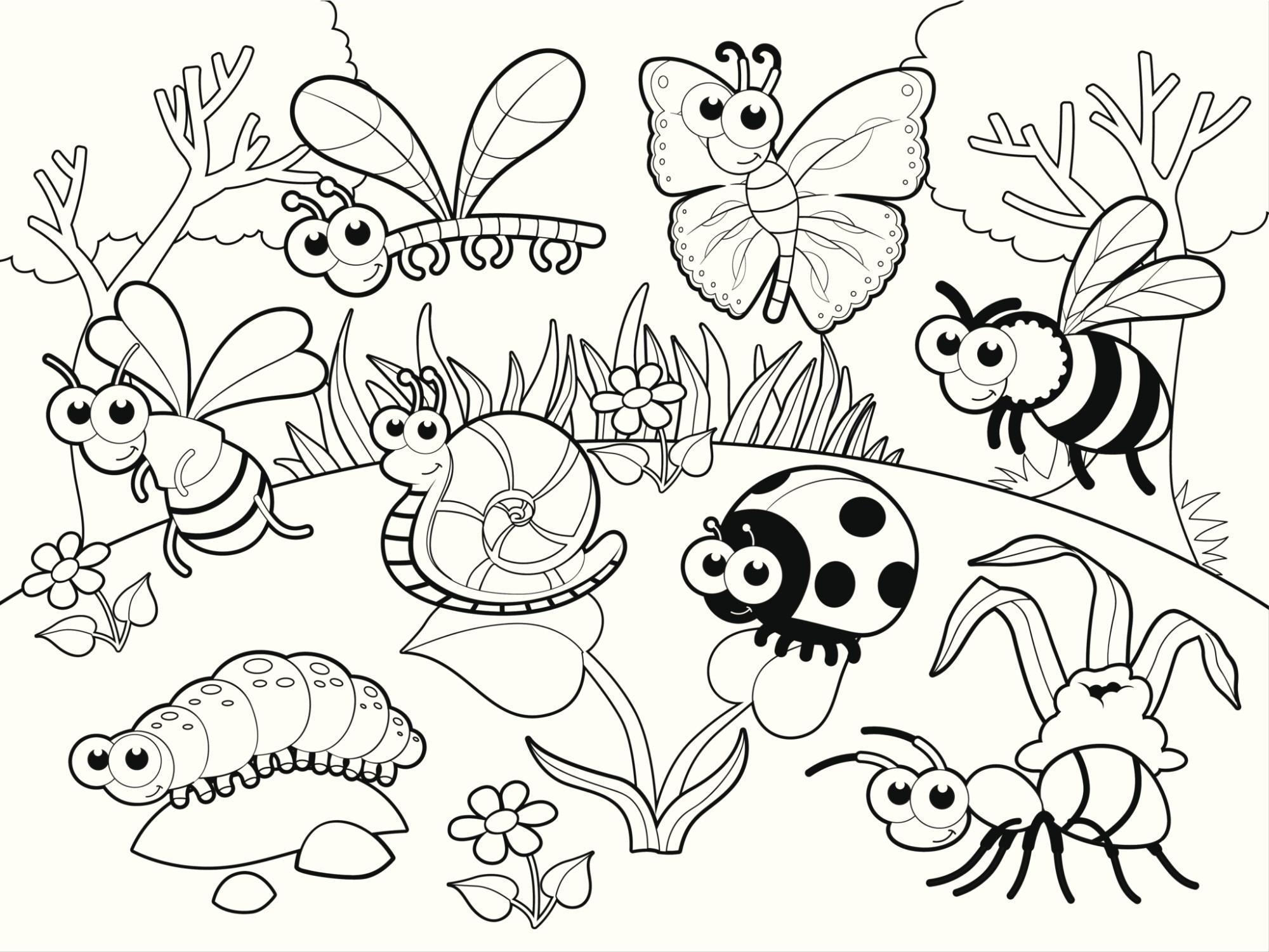 Insectos en el jardín
