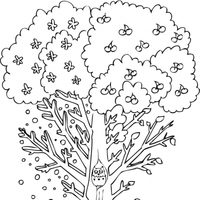 Árbol con animales