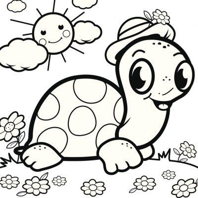 Tortuga con sombrero: dibujo para colorear
