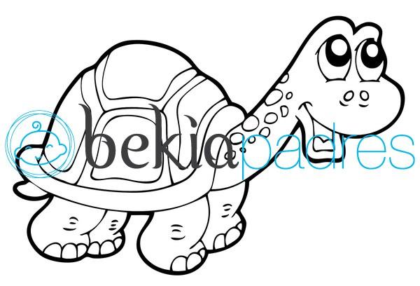 Tortuga: dibujo para colorear