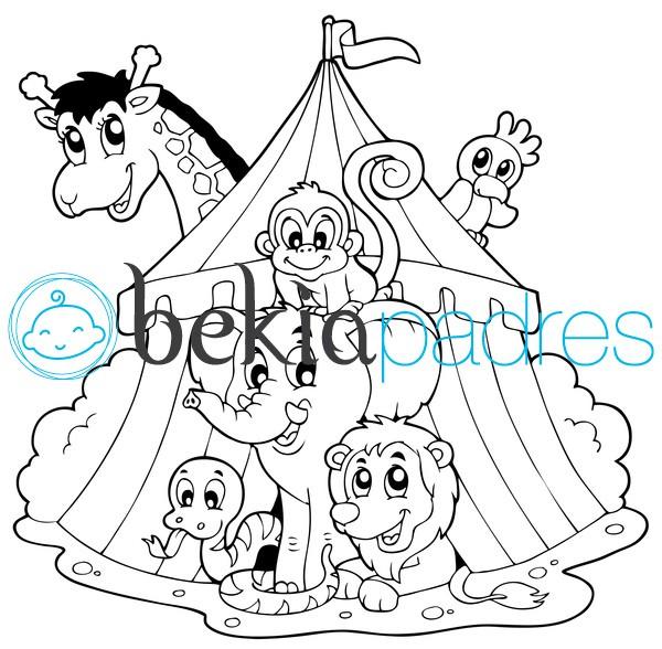 Circo con animales dibujo para colorear