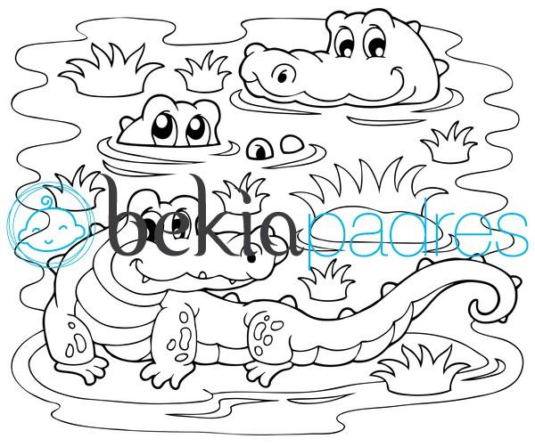 Cocodrilos en el lago: dibujo para colorear