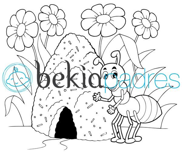 Hormiga: dibujo para colorear