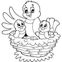 Pájaros en el nido