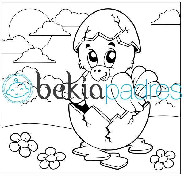 Pollito saliendo del cascarón: dibujo para colorear