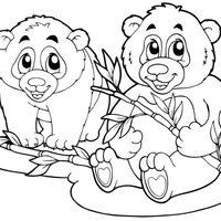 Dos osos con bambú