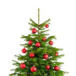Ideas para decorar el rbol de navidad galer a en bekia - Bolas de navidad rojas ...