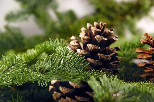 Árbol de Navidad decorado con piñas